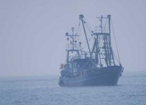 Fischerboot bei der Rückkehr in den Hafen