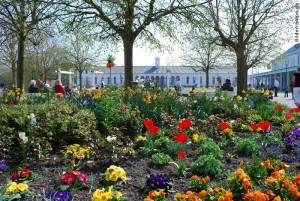 Frühling auf Norderney