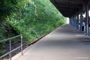 Überwuchertes Gleis am Strandbahnhof Travemünde