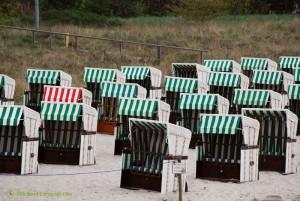 Roter Strandkorb von Grün umzingelt