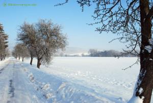 Winter-Landschaft mit viel Schnee